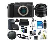 Panasonic Lumix DMC-GX8 Mirrorless Micro Four Thirds Digital Camera + Panasonic Lumix G Vario 14-42mm f/3.5-5.6 II + Pixi-Basic Accessory Kit
