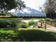 Commercial Duty 10 X 10 1 5 8 Dia. Frame Luxury Party Tent