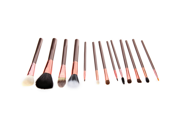 13pcs Professional Makeup Brush Set Cosmetic Brush Kit Makeup Tool with Cup Holder Case Brown 9SIA6HJ3423497