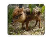 Pudu Small Cute Deer Beautiful Nature Cool Computer Mouse Pad 9