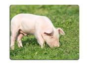 Young pig on a spring green grass Mouse Pad 9