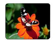 Beautiful Butterfly Customized Rectangle Mousepad, Mouse Pad Size:9