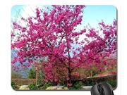 Cherry blossoms in full bloom Mouse Pad, Mousepad (Flowers Mouse Pad) Size:10