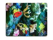 "Smoomfly Mouse Pad Natural Rubber Mousepad IMAGE ID: 2323270 Aquarium containing bright red fish colorful coral rocks and sea sponge Size:9"""" x 10"""""" 9SIA6HT74F9432"