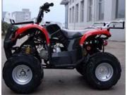 125cc Adventure Utility 4 Stroke Fully Auto ATV
