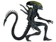 Action Figure - Aliens - Grid New 51600-2 9SIA10555R4549