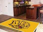 Fanmats University of Arkansas - Pine Bluff Golden Lions Rug 5'x8' 9SIV0NU44B1367