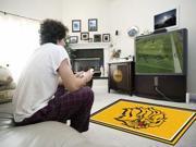 Fanmats University of Arkansas - Pine Bluff Golden Lions Rug 4'x6' 9SIV0NU44B0562