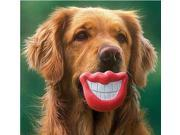 Random 3 pcs  Pet Dog Red Lips Chew Toys Squeak Toy Funny Smile Lips Toy Safe No-Toxic Rubber Toy