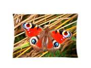 Colorful Butterfly Pillowcases Custom Pillow Case Cushion Cover 20 X 30 Inch Two Sides