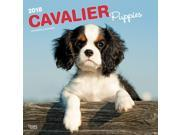 Cavalier King Charles Spaniel Puppies Wall Calendar by BrownTrout 9SIV0W75YT9366