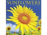 Sunflowers Wall Calendar by Willow Creek Press 9SIA7WR64T3079