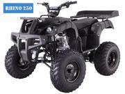 Tao Tao 250CC RHINO250 ATV