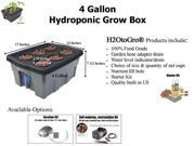4-Gallon H2OtoGro® Hydroponic Bubbler Deep Water Culture Grow System ~ Grow herbs, flowers, fruits and vegetables all year round!