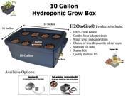 10-Gallon H2OtoGro® Hydroponic Bubbler Deep Water Culture Grow System ~ Grow herbs, flowers, fruits and vegetables all year round!