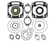 Complete Gasket Kit w/ Oil Seals Arctic Cat Prowler Special 440cc 1991 1992