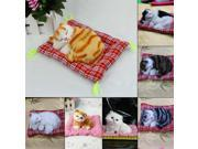 New Lovely Simulation Animal Doll Plush Sleeping Cats with Sound Kids Toy 9SIA90854D8206