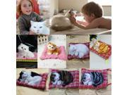 New Lovely Simulation Animal Doll Plush Sleeping Cats with Sound Kids Toy 9SIV0KY5K43357