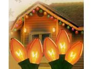 Set of 25 Transparent Orange C9 Christmas Lights 12