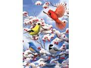 Toland Home Garden Finch And Cardinal 28 x 40 Inch Decorative Winter Bird Berries House Flag (9SIA93A8ZS7478 2130605277241) photo