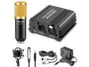 Neewer® NW-800 Microphone & Phantom Power kit: (1)NW-800 Microphone+(1)48V Phantom Power+(1)Power Adapter+(1)Shock Mount+(1)Anti-wind Foam Cap+(1)XLR Audio Cabl