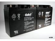 (2) Casil 12v 20ah for Summit SFC-300 Fire Control Panel
