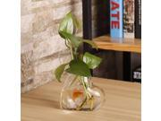 2017 New Heart Shaped Transparent Wall Hanging Vase Hydroponic Container Plant Flower Glass Bottle Home Office Wedding Decor 9SIA9AR7AT8741
