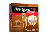 Heartgard Plus Chew Brown 12 PACK
