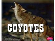 Coyotes (North American Animals) 9SIV0UN4FJ8380