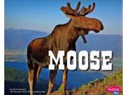 Moose (North American Animals) 9SIV0UN4FP6782