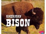 American Bison (North American Animals) 9SIA9UT3XT4697