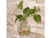 2017 Sunflower Shaped Transparent Wall Hanging Vase Hydroponic Container Plant Flower Glass Bottle Home Office Wedding Decor 9SIA9AR7AT8824