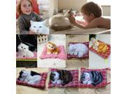 New Lovely Simulation Animal Doll Plush Sleeping Cats with Sound Kids Toy 9SIAA0C5395708