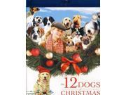 12 DOGS OF CHRISTMAS 9SIAA763UT4673