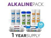 1 Year Alkaline System Replacement Filter Set 10 Filters With 50 GPD Membrane 9SIV19B6ZP4696