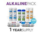 1 Year Alkaline System Replacement Filter Set 10 Filters With 100 GPD Membrane 9SIV19B6ZP5607