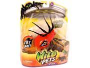Wild Pets Spider - Eyegore 9SIAAAR5TE2173