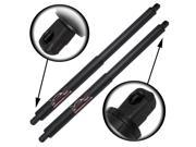 Qty (2) SG202014 OEM BMW X5 2007 To 2013 Liftgate Hatch Cylinder Lift Supports W/O Power Gate - SG202014 9SIAAR74NB6000