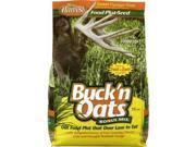 Image of Evolved Habitats 79506 Buck'n Oats 9.5 lb. Bag Oats & Chicory - Quarter Acre