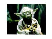 Real Deal Memorabilia FOz11x14-1 11 x 14 in. Frank Oz Signed - Autographed Star Wars Yoda Photo 9SIV06W6A85668