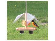 Looker Oriole Oriole Buffet Bird Feeder (9SIA00Y6EU7124 SE560 Looker Products) photo