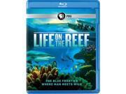 PBS PBS BRLIR601 Life on The Reef DVD - Blu-Ray 9SIV06W6X28451
