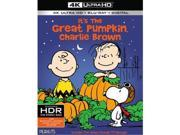 Warner Home Video WAR BR650973 Its The Great Pumpkin, Charlie Brown DVD - Blu-Ray 9SIV06W6X28227
