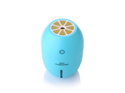 Mini Lemon Humidifier,180ML Portable Cool Mist Mini Ultrasonic USB Air Humidifier Bedroom Purifier for Home Car Travel Office Baby Kids 9SIAAZM5VM8259