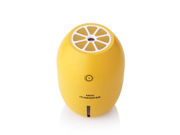 Mini Lemon Humidifier,180ML Portable Cool Mist Mini Ultrasonic USB Air Humidifier Bedroom Purifier for Home Car Travel Office Baby Kids 9SIAAZM5VM8319