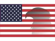 5in x 3in Eagle Shadow American Flag Magnet Magnetic Patriotic Vehicle