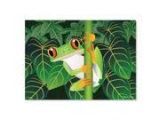 Melissa And Doug 8930 Red-Eyed Tree Frog Cardboard Jigsaw Puzzle, 60 Pieces 9SIV06W68A0230