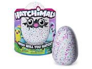 Spin Master 30353210 Hatchimals Pengualas, Pink & Teal Egg 9SIV06W70W5115