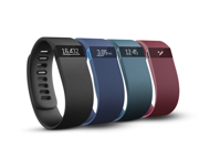 Fitbit Charge Wireless Activity Tracker Wristband
