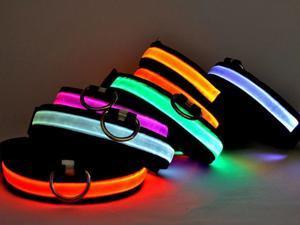 Neon Dog Collar